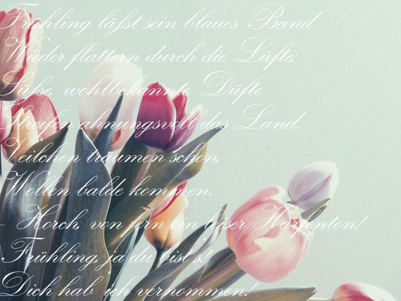 Blumen und Gedicht als Frühlingsgruß.